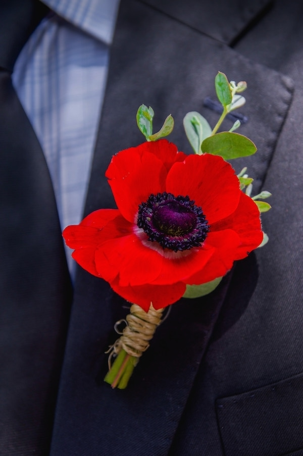 red anemone boutonniere